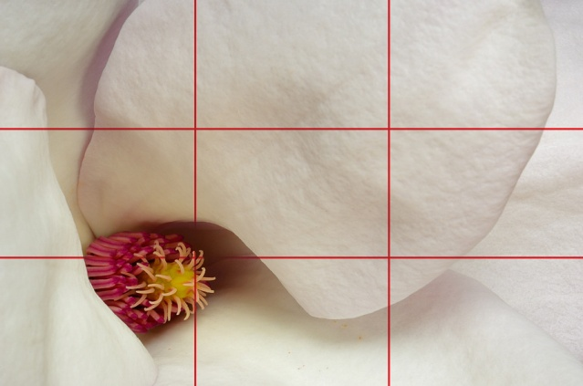 With Rule of Thirds grid superimposed.